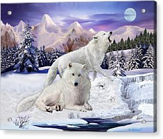 Snow Wolves Of The Wild Acrylic Print by Glenn Holbrook