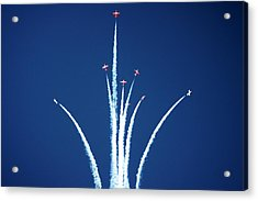 Snowbird Starburst Acrylic Print by Michael Courtney