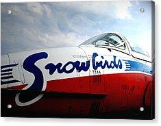 Snowbirds 2 Acrylic Print by Mark Alan Perry