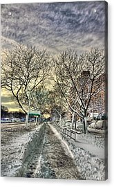Snowbound Acrylic Print by Evelina Kremsdorf