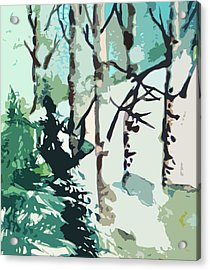 Snowbound Acrylic Print by Mindy Newman