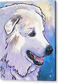 Snowdoggie Acrylic Print by Nadi Spencer