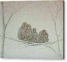 Snowed Under Acrylic Print by Pat Scott