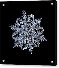 Snowflake Macro Photo - 13 February 2017 - 3 Black Acrylic Print