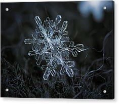 Acrylic Print featuring the photograph Snowflake Of January 18 2013 by Alexey Kljatov