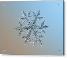 Acrylic Print featuring the photograph Snowflake Photo - Asymmetriad by Alexey Kljatov