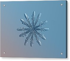 Snowflake Photo - Chrome Acrylic Print