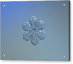 Snowflake Photo - Forget-me-not Acrylic Print