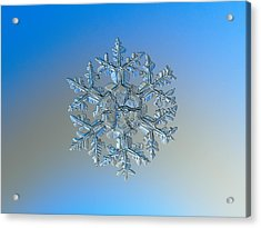 Snowflake Photo - Gardener's Dream Acrylic Print
