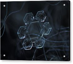 Snowflake Photo - Jewel Acrylic Print