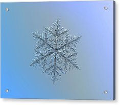 Snowflake Photo - Majestic Crystal Acrylic Print