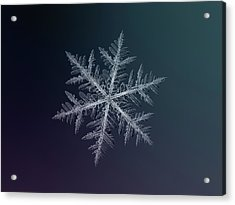 Snowflake Photo - Neon Acrylic Print
