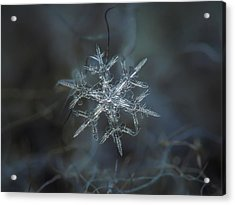 Acrylic Print featuring the photograph Snowflake Photo - Rigel by Alexey Kljatov