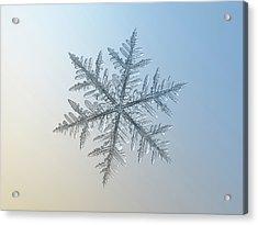 Acrylic Print featuring the photograph Snowflake Photo - Silverware by Alexey Kljatov