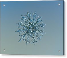 Snowflake Photo - Twelve Months Acrylic Print
