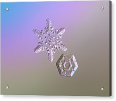 Snowflake Photo - Two Hearts Acrylic Print by Alexey Kljatov