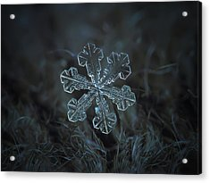 Snowflake Photo - Vega Acrylic Print