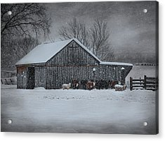 Snowflakes On The Farm Acrylic Print