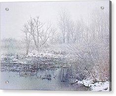 Snowmist Marsh Acrylic Print