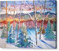 snowy Afternoon Acrylic Print by Joyce Kanyuk