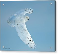 Snowy Against Blue Sky Acrylic Print