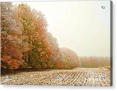 Snowy Autumn Field Acrylic Print by Terri Gostola