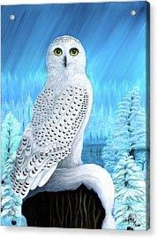 Snowy Delight Acrylic Print