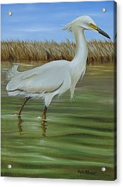 Acrylic Print featuring the painting Snowy Egret 1 by Phyllis Beiser