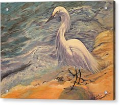 Acrylic Print featuring the painting Snowy Egret by Pauline  Kretler