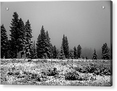 Snowy Acrylic Print