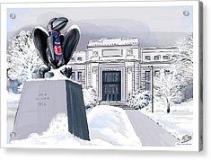 Snowy 'hawk Acrylic Print