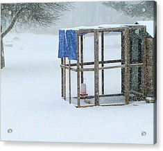 Acrylic Print featuring the photograph Snowy Hen House by Barbara Giordano
