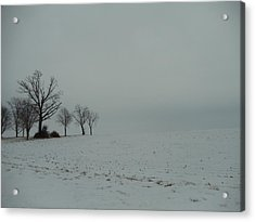 Snowy Illinois Field Acrylic Print by David Junod