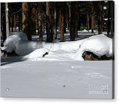 Snowy Log Acrylic Print by PJ  Cloud