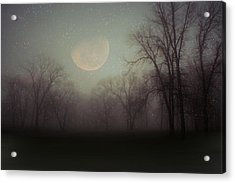 Moonlit Dreams Acrylic Print