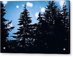 Snowy Night Acrylic Print by Debi Bishop
