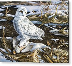 Snowy Owl And Hungarian Partridge Acrylic Print by Larry Seiler