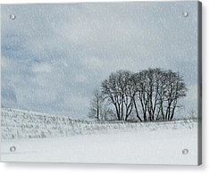 Snowy Pasture Acrylic Print by JAMART Photography