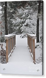 Snowy Path Acrylic Print by Catherine Reusch Daley