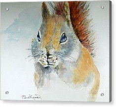 Snowy Red Squirrel Acrylic Print