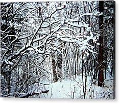 Snowy Silence Acrylic Print by Shirley Sirois