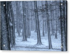 Snowy Winter Woods Acrylic Print by Randy Steele