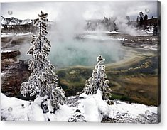 Snowy Yellowstone Acrylic Print by Jason Maehl