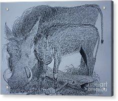 Snuggle Acrylic Print by David Joyner