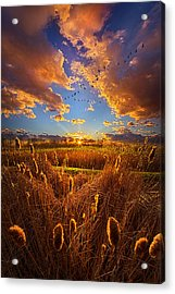 So Long I Can't Remember Acrylic Print by Phil Koch
