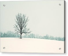 So Silent Acrylic Print by Todd Klassy