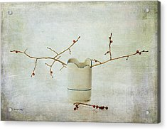 So Simple, So Pretty Acrylic Print by Randi Grace Nilsberg