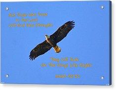 Soar On The Wings Like Eagles Isaiah 40 31  Acrylic Print