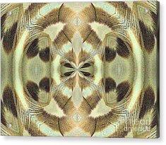 Soar Acrylic Print
