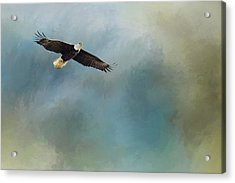 Acrylic Print featuring the photograph Soaring by Rebecca Cozart